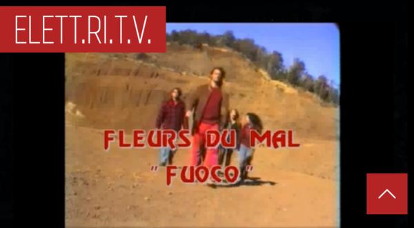 fleurs_du_mal_fuoco