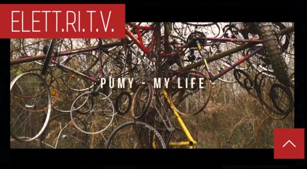 pumy_my_life
